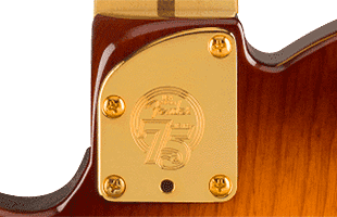 detail image of Fender 75th Anniversary Commemorative Telecaster showing 75th anniversary commemorative neck plate