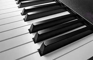 closeup image of Roland A-88MKII keybed