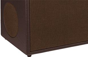 detail image of Fender Acoustic SFX II showing side-radiating speaker grille on left side