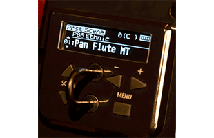 detail image of Roland Aerophone Pro AE-30 OLED screen showing sound selection interface