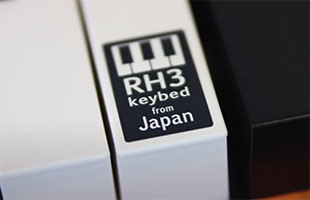detail image of Korg C1 Air keybed showing removable sticker with logo graphic for RH3 keybed