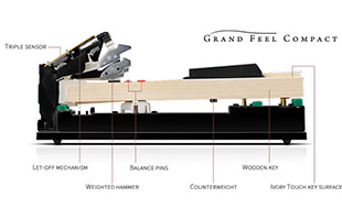 cutaway diagram with callouts showing Kawai Grand Feel Compact keyboard key mechanism