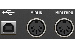 detail image of Behringer Cat panel showing USB and MIDI connections