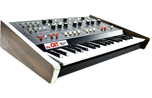 3/4 view of Octave Plateau Cat synthesizer showing top, left side and front