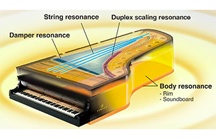 cutaway diagram calling out components of Yamaha Virtual Resonance Modeling technology