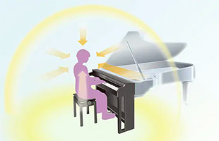 diagram illustrating Yamaha Grand Acoustic Imaging sound system