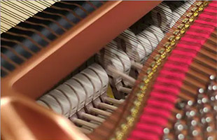 detail image of strings and hammer mechanisms inside a grand piano