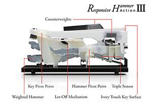 cutaway image of Kawai RHIII piano key assembly