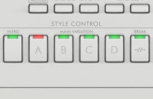 detail image of Yamaha DGX-670 control panel showing STYLE CONTROL buttons