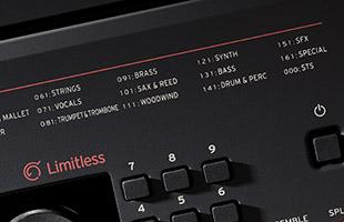 detail image of Korg EK-50 L top panel showing list of sounds