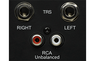detail image of PreSonus Eris Sub8 Subwoofer back panel showing stereo quarter-inch TRS and stereo RCA audio inputs