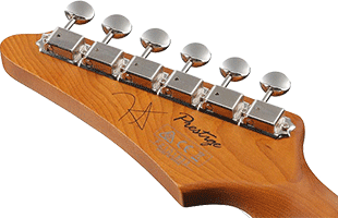 detail view of Ibanez FLATV1 headstock back showing Gotoh machine heads