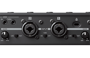 detail rear image of Akai Professional Force showing audio inputs
