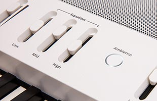 detail image of Roland FP-60X showing equalizer controls and speaker grillew