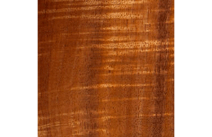 Hawaiian koa wood swatch showing typical color and wood grain pattern