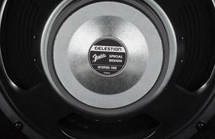 detail image of Fender GTX100 Celestion speaker back plate