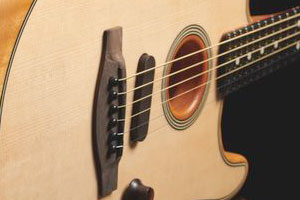 Image of Acoustasonic Stratocaster pickup