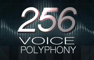 soundwave graphic with the words 256 VOICE POLYPHONY overlaid