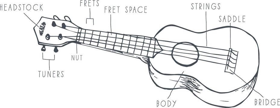 illustration with labeled callouts showing parts of a ukulele