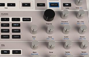 detail image of Waldorf Kyra top panel showing filter controls