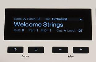detail image of Waldorf Kyra top panel showing OLED display