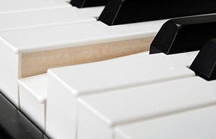 detail image of Viscount Legend '70s showing wooden keys