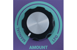 detail image of Dreadbox Lethargy control panel showing AMOUNT knob