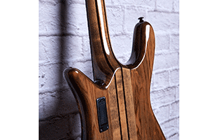 detail back view of Spector NS Dimension 4 showing 5-piece neck-thru construction