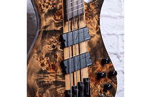 detail image of Spector NS Dimension 4 showing Fishman Fluence pickups