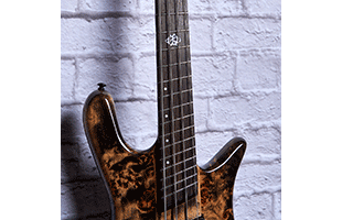 detail image of Spector NS Dimension 4 showing fretboard