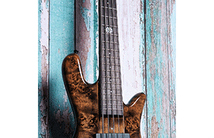 detail view of Spector NS Ethos 5 fretboard showing 12th fret Spector logo inlay