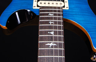 Image of PRS SE Custom 22 Neck