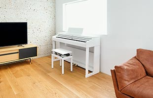 Roland RP701 in living room with television and couch