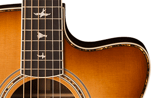 detail image of PRS SE A40E showing Angelus cutaway