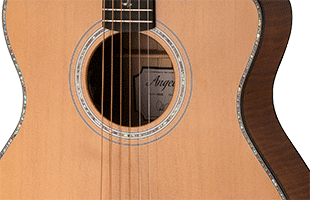 close-up image of PRS SE A50E body showing solid spruce top and maple sides