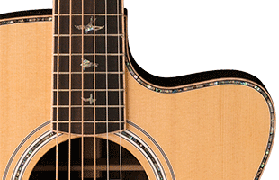 detail image of PRS SE A60E showing Angelus cutaway