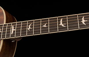 detail image of PRS SE P20E showing ebony fingerboard with PRS bird inlays