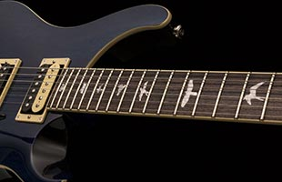 detail image of PRS SE Standard 24 showing rosewood fretboard with PRS bird inlays