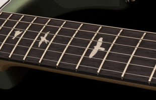detail top view of PRS Silver Sky showing rosewood fingerboard with PRS trademark small bird inlays