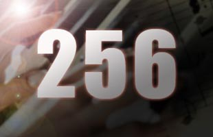 stylized icon showing the number 256