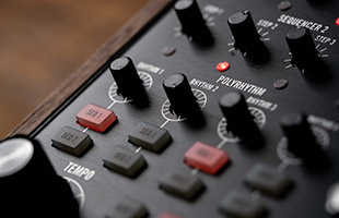 detail image of Moog Subharmonicon showing sequencer and rhythm generator controls