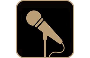 icon illustration representing microphone input on Yamaha THR30IIA Wireless