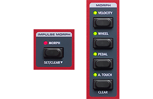detail image of Nord Wave 2 top panel showing Morph control sections