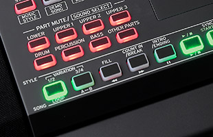 detail image of Korg XE20 top panel showing Style buttons